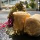 Jornadas Gastronómicas De La Sal y El Estero | Puerto Sherry